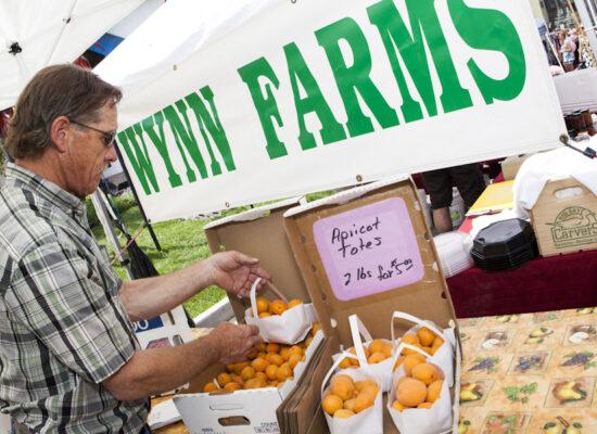 Wynn Farms